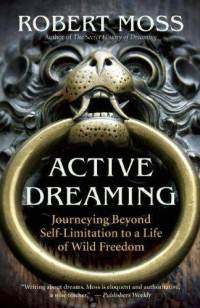 Active Dreaming: Journeying Beyond Self Limitation to a Life of ...