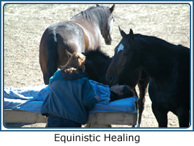 Equinistic Healing