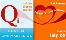 Classes with Master Gu Online LIVE